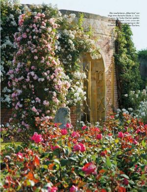 Photos - beautiful country houses - old house garden - roses.jpg