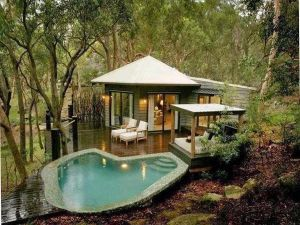 Pictures - Garden with pool - blog about interior design - trees.jpg