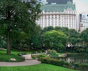 Pictures - beautiful building design - mylusciouslife - Plaza and Central Park.jpg