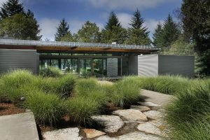 Rutherford in the Napa Valley house designed by architecture studio Johnson Fain.jpg