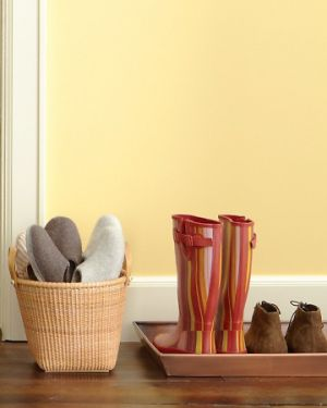 Home organisation ideas - mylusciouslife.com - Martha shoe trays.jpg