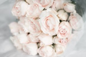 Pale pink roses in a bunch.jpg