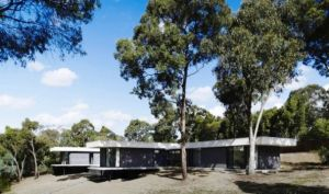 Melbourne-Modern-Family-Side-Yard-with-Mature-Trees-Around-the-House.jpg