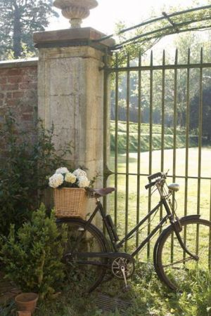 Bicycle at gate with hydrangeas.jpg