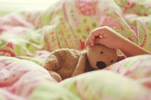 bear-green-photography-pink-teddy.jpg