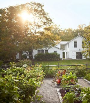 vegetable-garden-simple-new-york-retreat-by Mikkel Vang.jpg