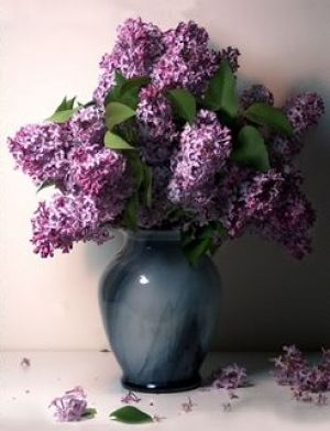 Purple mauve lilac photos - Lilac in vase.jpg
