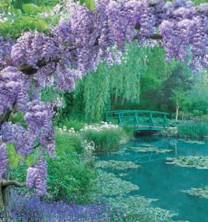 Purple mauve lilac photos - veranda magazine.jpg