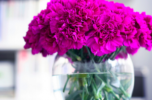 purple carnations - www.myLusciousLife.com.png