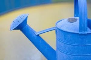 True blue colour photo gallery - Blue watering can.jpg