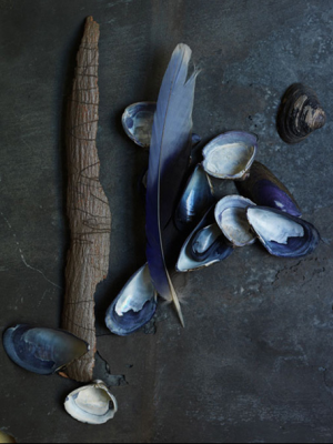 True blue colour photo gallery - indigo blue via society2.png