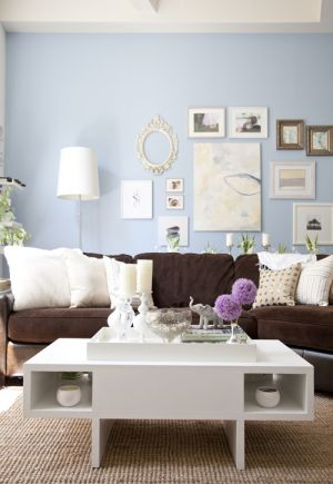 True blue colour photo gallery - pale blue wall in living room.jpg