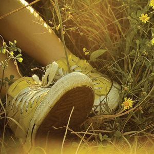 Cheery yellow - Yellow shoes in field of wildflowers.jpg