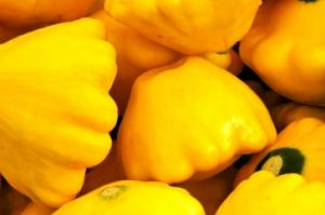 Light and bright yellow - Yellow squash.jpg