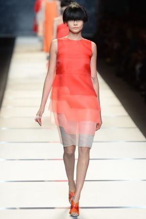 Fendi Spring 2014 RTW Collection.JPG