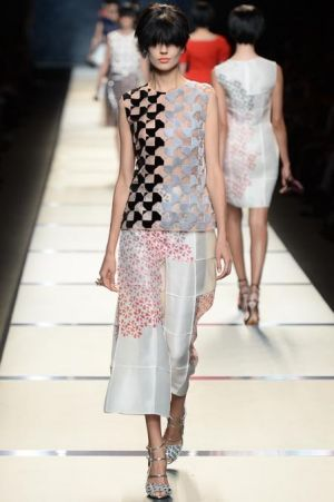 Fendi Spring 2014 RTW Collection