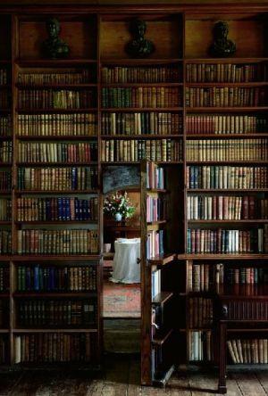 library1039.jpg