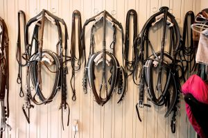 Harnesses - MS for Equestrian Quarterly magazine Fall 2013.jpg