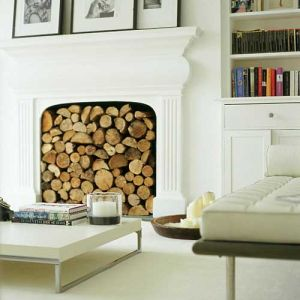 Images of fireplaces - Modern fireplace design - fire-logs.jpg