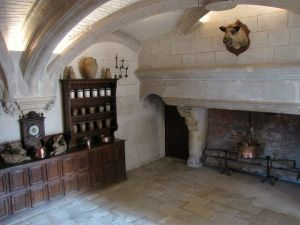 french-kitchen-old-world-decor-massive-fireplace-mounted-boars-head-castle-of-chenonceau-france.jpg