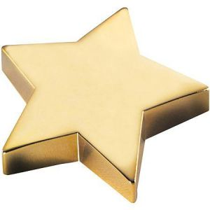 Gifts - Natico Silver Star Paperweight.jpg