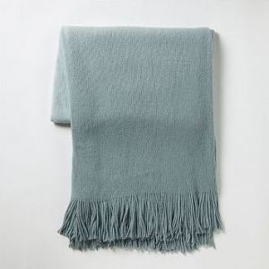 Gifts for men - Softest Throw - sea - West Elm.jpg