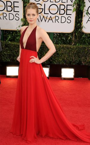 2014 Golden Globes - Red Carpet - Amy Adams in Valentino and Brian Atwood