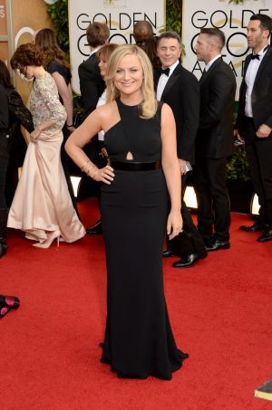 2014 Golden Globes - Red Carpet - Amy Poehler in Stella McCartney