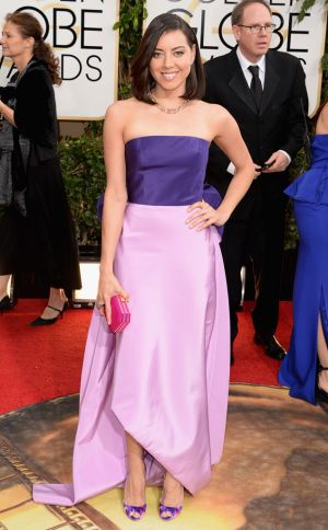 2014 Golden Globes - Red Carpet - Aubrey Plaza