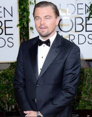 2014 Golden Globes - Red Carpet - Leonardo DiCaprio