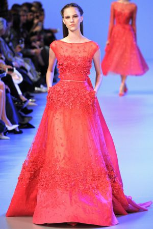 Elie Saab Spring 2014 couture collection15.JPG