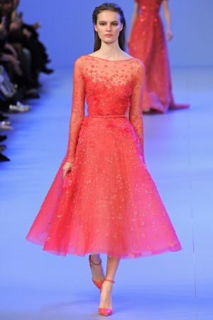 Elie Saab Spring 2014 couture collection16.JPG