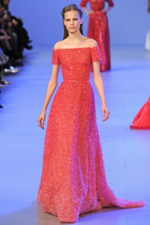 Elie Saab Spring 2014 couture collection17.JPG