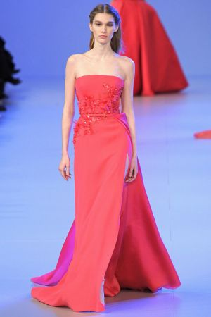 Elie Saab Spring 2014 couture collection19.JPG