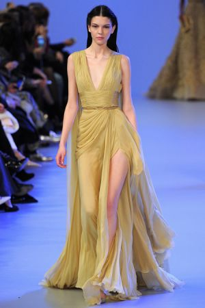 Elie Saab Spring 2014 couture collection22.JPG