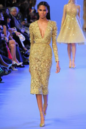 Elie Saab Spring 2014 couture collection24.JPG