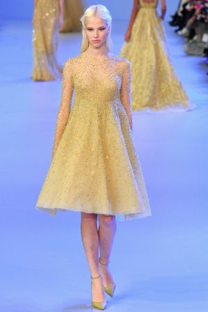 Elie Saab Spring 2014 couture collection25.JPG