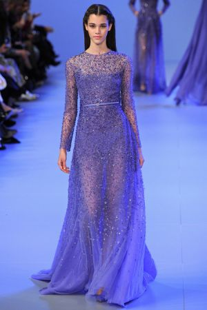 Elie Saab Spring 2014 couture collection33.JPG