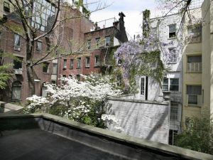 165 EAST 70TH STREET - garden.jpeg
