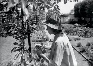 Bunny Mellon by Henri Cartier-Bresson in her Oak Spring garden 1962.jpg