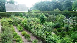 Photo by Oscar de la Renta of his gardens in Kent Connecticut - Annette de la Renta.jpg