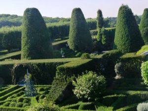 Photo by Oscar de la Renta of his gardens in Kent Connecticut - clipped hedge trees garden.jpg