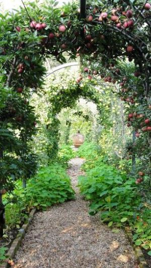 Photo by Oscar de la Renta of his gardens in Kent Connecticut - country living.jpg