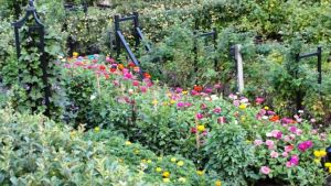 Photo by Oscar de la Renta of his gardens in Kent Connecticut - flower garden.jpg