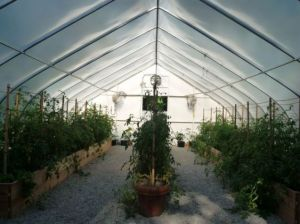Photo by Oscar de la Renta of his gardens in Kent Connecticut - greenhouse.jpg