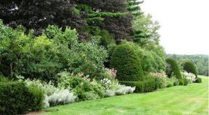 Photo by Oscar de la Renta of the de la Renta gardens in Kent Connecticut.jpg