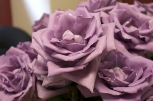 Pastel wedding colour ideas - myLusciousLife.com - lavender.jpg