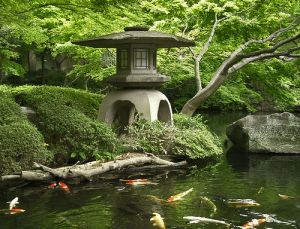 Asian beauty - japanese garden.jpg