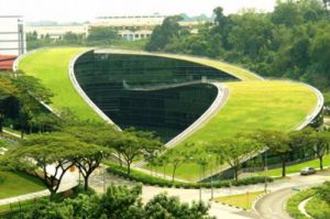 Green-turfed-roofscape-school-of-art-design-and-media-singapore.jpg