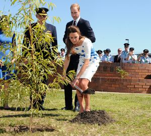Kate Middleton - tree planting - Brisbane - blue and white floral dress.jpg